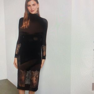 BCBG Maxazaria Lace Dress